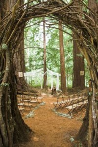woodlandwedding5
