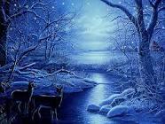 wintersolstice1